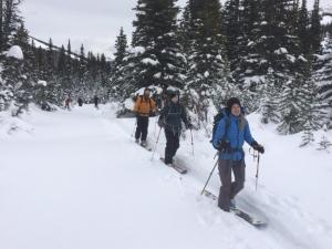 ski icefields parkway